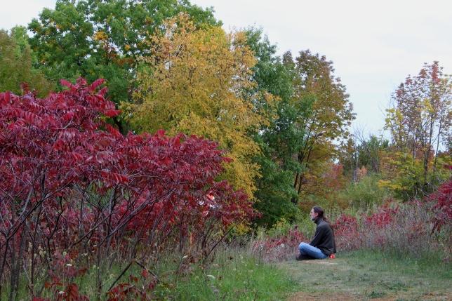 contemplating colors
