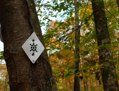 Sheltowee trail marker