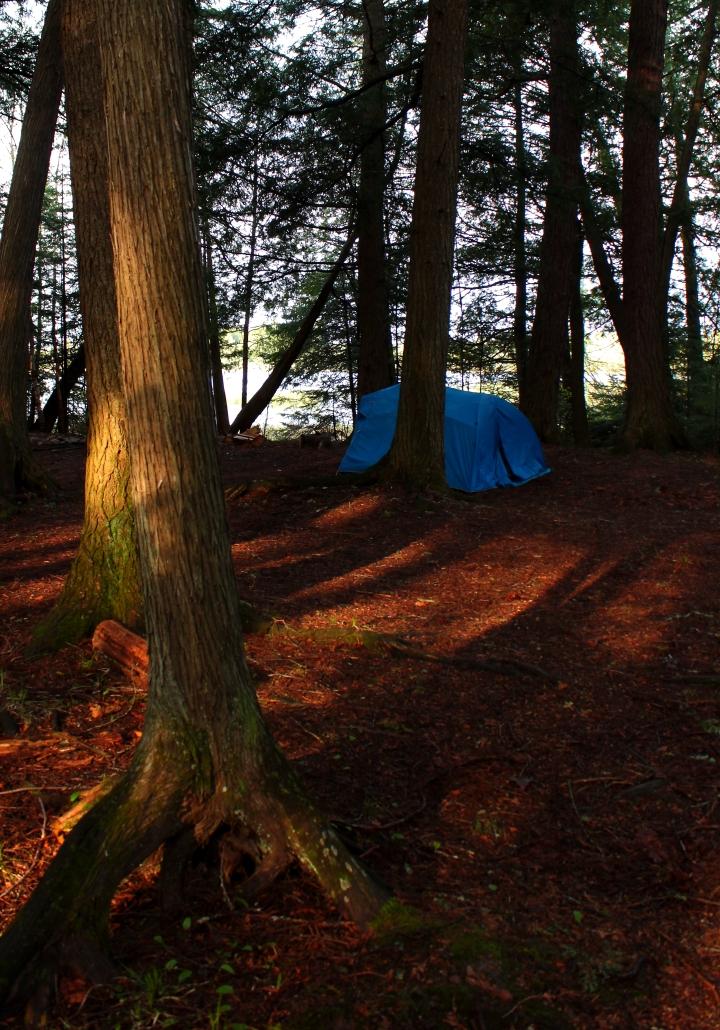 room tent