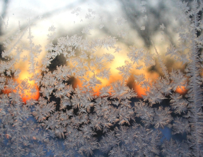 evening frost 2