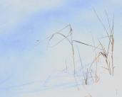 snowy emergence