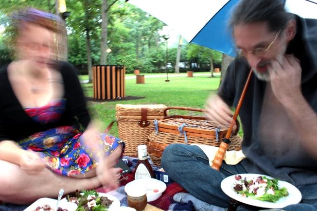 picnic blur