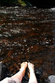 sturgeon river feet