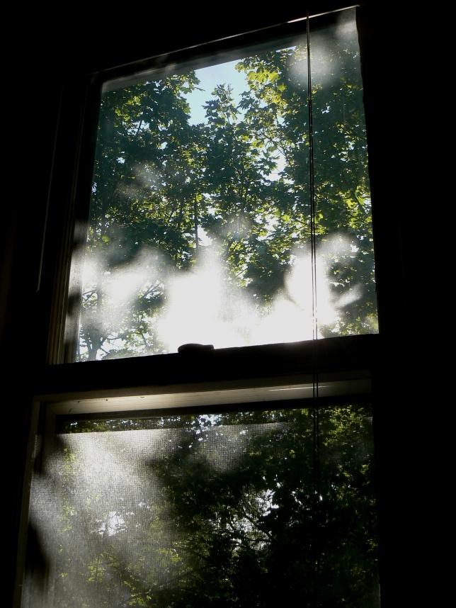 frame late summer