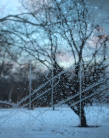 frosty-window