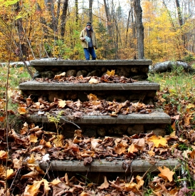 joyce steps