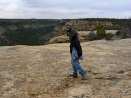 Mesa Verde ravens